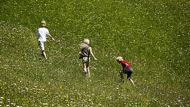 Children playing on a meadow